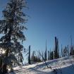Lusen (Bayrischer Wald)